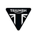 triumph2